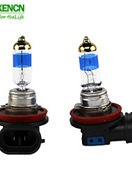 XENCN H16 12V 19W 5000K TELEEYE INTENSE LIGHT Upgrade Excellent Quality Bulbs Fog Halogen Headlight Lamp
