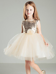 Ball Gown Flower Girl Dress - Satin Sleeveless