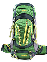 Hewolf Waterproof Waterproof Zipper Multifunctional Dry Bag Hiking Cycling 1755 45+10L Light Grey/Green/Blue