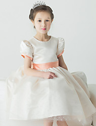 Ball Gown Knee-length Flower Girl Dress - Tulle Short Sleeve