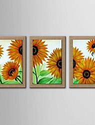 pintura decoração óleo de girassol abstrato pintado à mão de linho natural com esticada enquadrado - conjunto de 3
