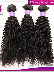 Brazilian Kinky Curly Virgin Hair Hair Extension Cheap Unprocessed Remy Human Hair Weave Bundles