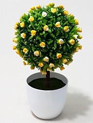 Natural Green Plants Trees in White Ceramic Pot