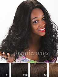 New arrival 12''~18'' natural curly Remy Virgin Indian Human Hair Wigs Silk Top Full Lace front Wigs With Baby Hair