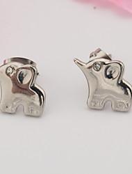 A Woman's Stainless Steel Earrings