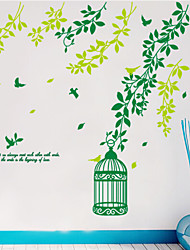 murales oiseau vert cage pvc style Stickers muraux autocollants mur autocollants