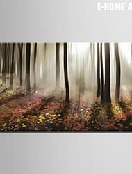 Stretched Canvas Art Landscape Morning Mist