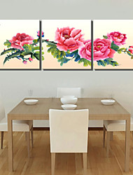 VISUAL STAR®Pink Peony Flower 3 pieces Canvas Wall Art for Living Room Decor Ready to Hang