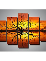Hand-Painted Art Wall Decor Painting Modern Home Decoration  Oil Painting on Canvas  5pcs/set Without Frame