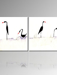 VISUAL STAR®High Quality Bird Stretched Canvas Painting Two Pannel Animal Wall Art Ready to Hang