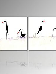 visuelle oiseau star®high qualité toile tendue peinture deux pannel paroi animal art prêt à accrocher