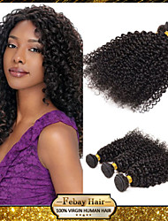Cheap Rosa Hair Products 6A Unprocessed Brazilian Virgin Hair Kinky Curly 1Bundle/Lot 100% Human Hair