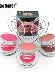 1 blush normale secco / shimmer / minerale in polvere 2 colore