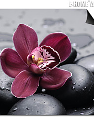 E-HOME® Magnetic Print Replaceable Art Black Stones And Flowers Decorative Painting Multi Style Optional