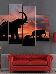 Stretched Canvas Print Art Animal Elephants Set of 4