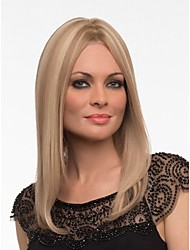 Capless Extra long Synthetic Mix Color Straight Hair Wig