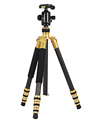 Sinno J5 Professional Carbon Tripod For SLR Camera & Ball Head Portable Compact Camera Tripods Monopod