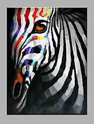 Single Modern Abstract Pure Hand Draw Ready To Hang Decorative The A Zebra Oil Painting