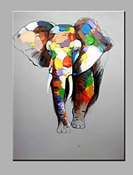 одного современного абстрактного чистого ничья рука готовы повесить слон декоративный маслом