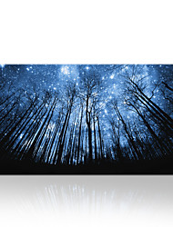 VISUAL STAR®Imagination Keep Your Eyes on the Stars and Your Feet on the Ground Art Print Poster Canvas Print Wall Decor