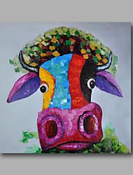 pronto para pendurar a pintura a óleo pintados à mão esticada em animais da arte da lona da parede da arte pop bonito bull casa deco um