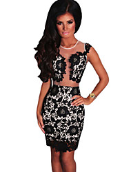 Women's  Black Mesh Lace Crochet Dress