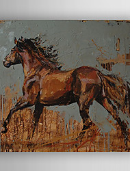 Oil Painting  Impression Horse Hand Painted Canvas with Stretched Framed Ready to Hang