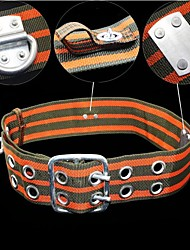 ZIQIAO Outdoor Sports Rock Climbing Waist Seat Belt Climbing Safety Belt Climbing Electrician Aerial Work Insurance