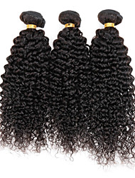 3 Bundles Kinky Curly Peruvian Virgin Hair Extensions Weft Human Hair Weave lot