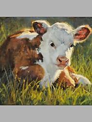 милые животные Desgin ручная роспись на траве коровы на землю остальных