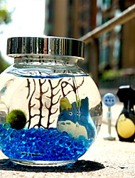 Simple Micro Landscape Glass Bottle Algae Ecological Landscape Plants Creative Potted Birthday Is Valentine'S Day Gift