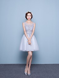 Cocktail Party Dress Ball Gown Jewel Short / Mini Lace / Tulle with Lace