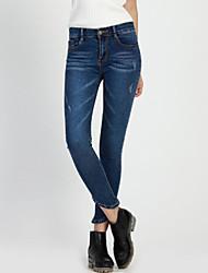 Women's Jacquard Blue Cotton Pant , Plus Size / Casual / Day