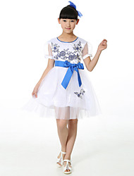 Performance Dresses Children's Performance Chinlon Embroidery 1 Piece White