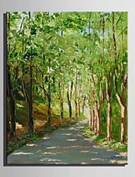 mini tamaño de la pintura al óleo e-hogar carreteras modernas en el bosque a mano puro dibujan pintura decorativa sin marco