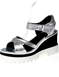 Women's Shoes Wedge Heel Wedges / Platform / Slingback / Open Toe Sandals Outdoor / Dress / Casual Silver