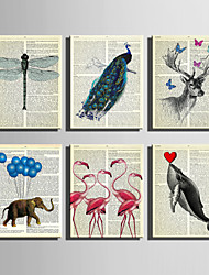 E-HOME® Stretched Canvas Art Color Animals In Newspapers Series Decoration Painting MINI SIZE One Pcs