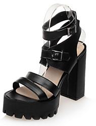 Women's Shoes  Chunky Heel Heels / Peep Toe / Platform / Slingback / Gladiator Sandals Party & Evening / Dress