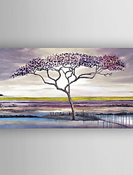 Oil Painting Landscape a Big Tree Hand Painted Canvas with Stretched Framed Ready to Hang