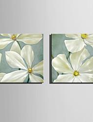 mini tamaño de la pintura al óleo e-hogar flores modernas mano pura dibujan pintura decorativa sin marco