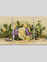 Canvas Set Of 3 Modern Wall Painting Peony Canvas Art Pictures Print Painting Wedding Home Decor