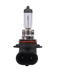 2 pcs GMY 55w 1095 ± 15% da luz do carro lm 3000k halogéneo HB4 9006 12v clara