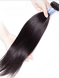 Tejidos Humanos Cabello Cabello Brasileño Recto 18 Meses 1 Pieza los tejidos de pelo