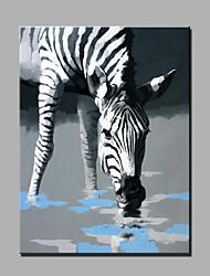 abstrata moderna da pintura a óleo pintado à mão pura pronto para pendurar decoração a uma zebra