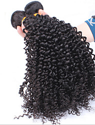 3Pc/Lot Protea Hair Products Kinky Curly Virgin Hair Brazilian Hair Bundles Weaves 100% Natural Black Kinky Curly Hair