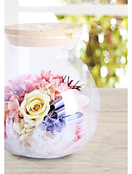 Preserved Fresh Flowers Bottle Wishing Light Bottle with Remote Control 1pc/set