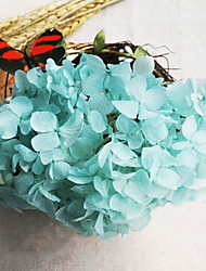 Blue Hydrangea Preserved Fresh Flowers