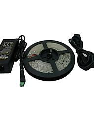 5M 600x3528 SMD Branco Fita LED e conector e AC110-240V para DC12V6A Transformador