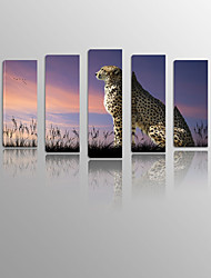 Leopard on Canvas Wood Framed 5 Panels Ready to hang for Living Decor