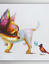 Hand Painted Oil Painting Animal Bird Attract the Dog's Attention with Stretched Frame